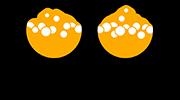 Olutakatemia